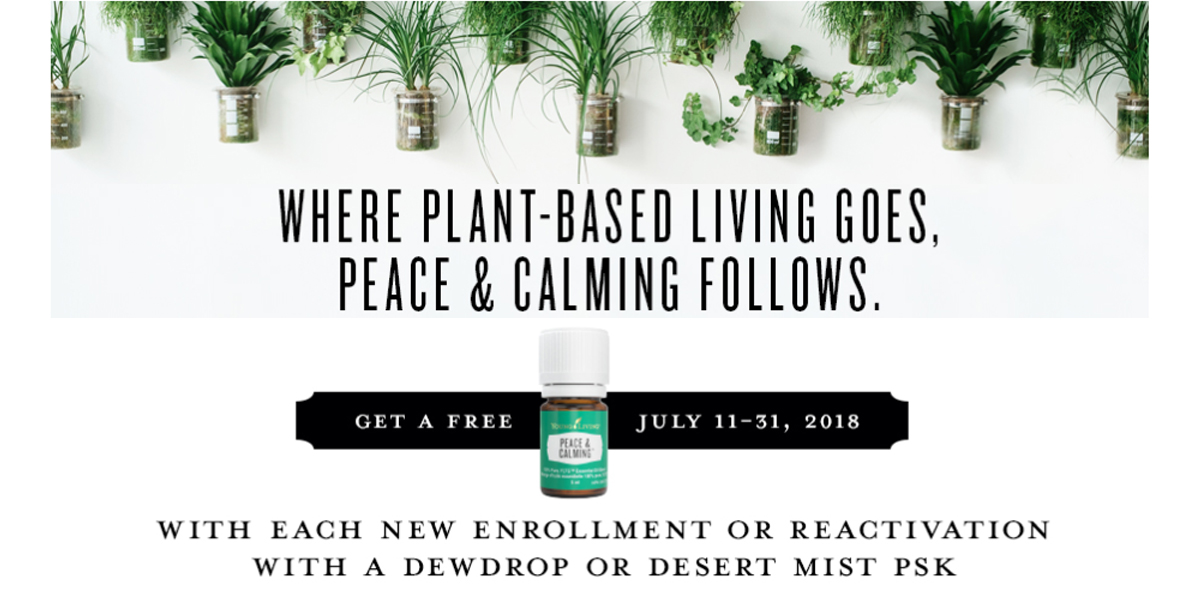 Celebrate Essential Oils Day – 11th of July and Year round!